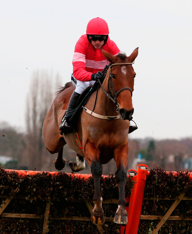 Laurina: 'You never know where the ceiling is going to be,' said Ruby Walsh. Photo: PA