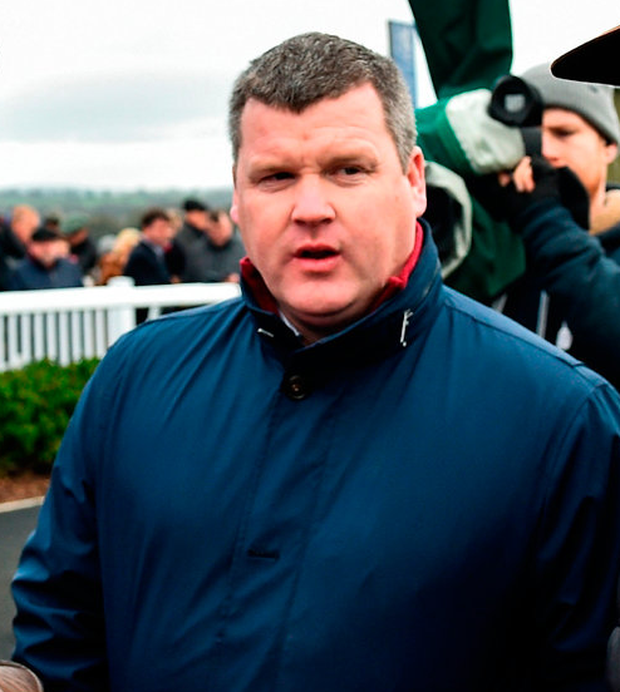 Elliott relied on Battleoverdoyen, a £235,000 purchase after winning a point-to-point, and then victorious, too, in a Punchestown bumper and a Navan maiden hurdle this season. Photo by Seb Daly/Sportsfile