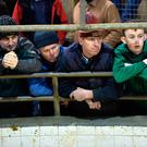 Farmers at the ring at Headford mart cattle and sheep sale. Photo: Ray Ryan.