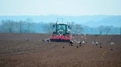 The soil was in excellent condition for Paul Murphy who sowed Huskey oats for farmer Ken Treacy on 50ac of ground in Rathellen, Leighlin, Co Carlow. Photo Roger Jones.