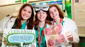 Discoveries: Ellie Colcannon (14), Kate Owens (13) and Aoibhe Briscoe (14) with their antibiotic resistance project. Photo: Frank McGrath