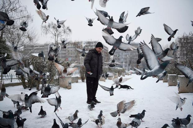 Pigeons fly in front of a man after snowfall in Thessaloniki, Greece. Photo: Giannis Papanikos/AP Photo