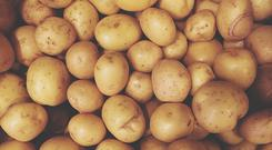 The humble spud is also dearer. Photo: Getty Images