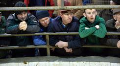 A section of farmers at the ring at Headford mart cattle and sheep sale. Photo; Ray Ryan.