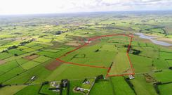This 150ac farm at Grange, Fourmilehouse in Co Roscommon sold at auction in October making €830,000