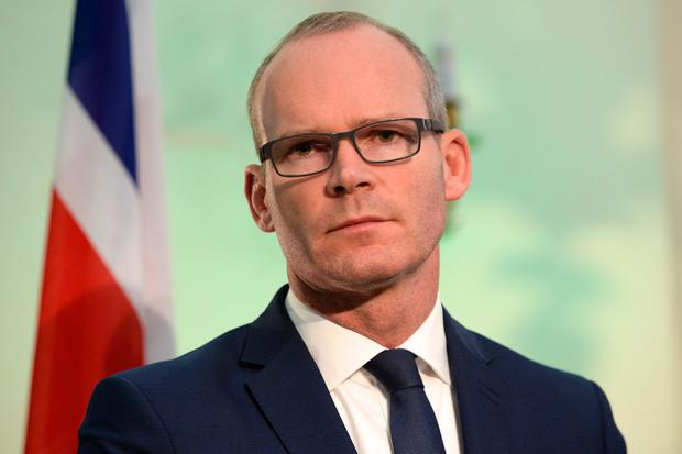 Common ground: Tánaiste Simon Coveney. Photo: Justin Farrelly
