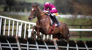 Felix Desjy, with Sean Flanagan up, jumps the last on the way to winning the Moscow Flyer Novice Hurdle. Photo: Patrick McCann/Racing Post