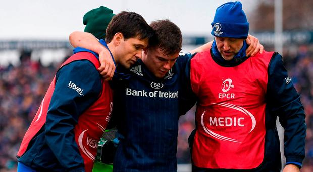 Luke-y escape - Leinster scrumhalf McGrath could be back from knee injury within six weeks