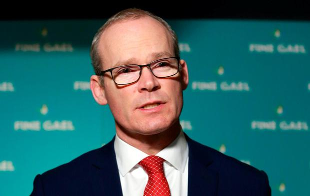Disruption: Tánaiste Simon Coveney admitted election could be hit. Photo: Frank McGrath