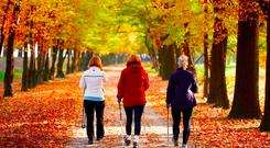 The health benefits of walking include better energy and fitness levels and sleeping better