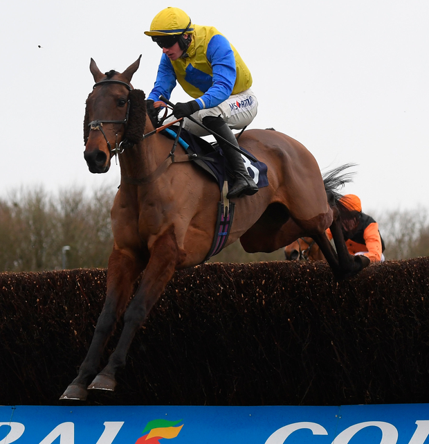Now McGinty, with Tom O'Brien up, on the way to winning the Novices Chase at Chepstow. Photo: Getty Images