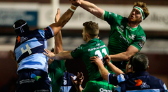 Cillian Gallagher of Connacht contests a lineout during the match against Cardiff Blues. Photo: Sportsfile