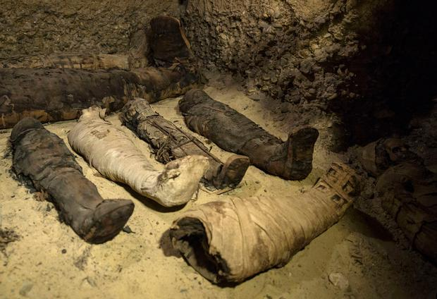 New trove of mummies casts light on Egypt's upper middle class