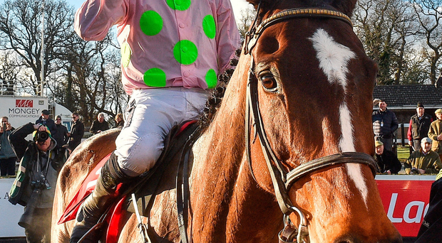 Willie Mullins off the mark as Min takes Ladrokes Dublin Chase