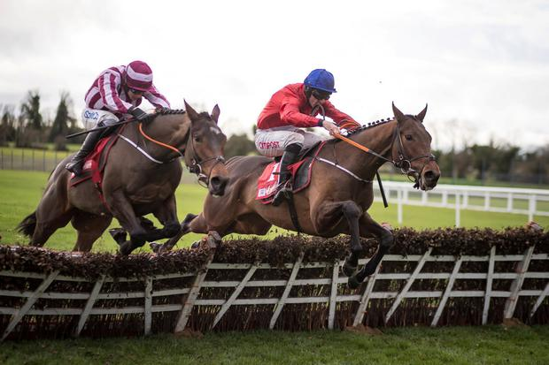 Coeur Sublime (left) was just edged out by Chief Justice (right) at Fairyhouse. Photo: Patrick McCann/Racing Post