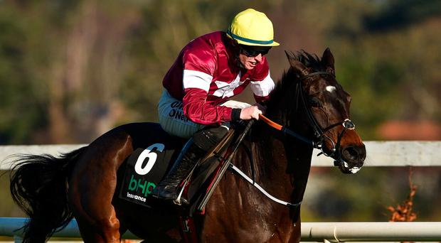 Classy Jade unlikely to take on D'Air
