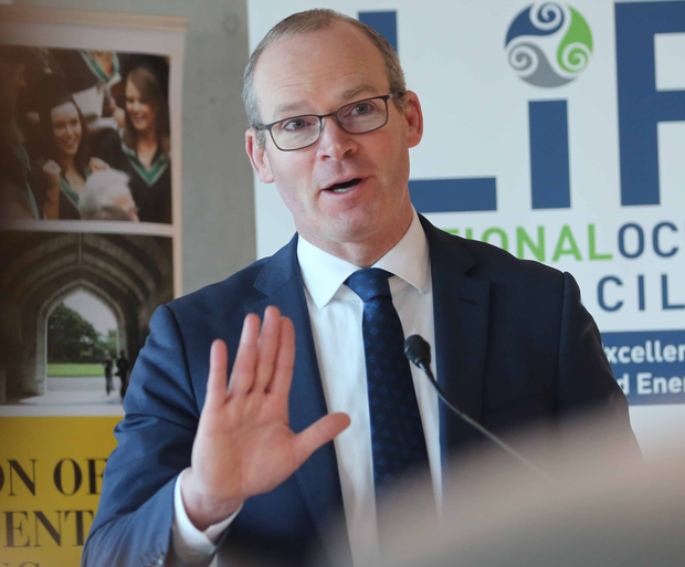 Simon Coveney called a suggestion to replace the backstop with technology 'wishful thinking' Photo: Clare Keogh