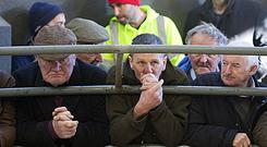 Farmers keeping a close eye on bidding at Roscommon Mart last Friday. Photo Brian Farrell