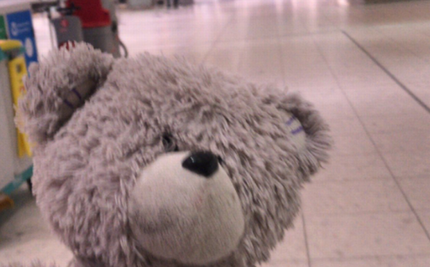 Ted Is Missing Someone Very Special Can You Help Track Them Down