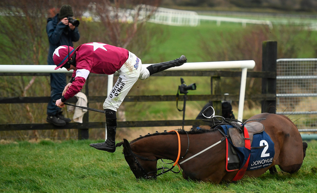 Jack Kennedy takes a tumble as Monatomic falls at the last during the novice chase at Punchestown. Photo by David Fitzgerald/Sportsfile