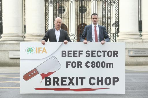 Joe Healy IFA President, Angus Woods IFA National Livestock Chair, before at an IFA lobby of TDs and Senators on the beef crisis in Dublin today. Picture: Finbarr O'Rourke