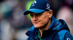 Joe Schmidt. Photo: Ramsey Cardy/Sportsfile