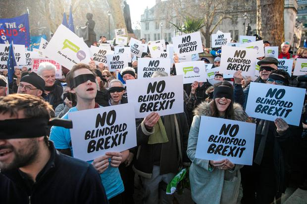 Anti-Brexit protesters demonstrate outside the Houses of Parliament on Valentines day. Photo: Getty