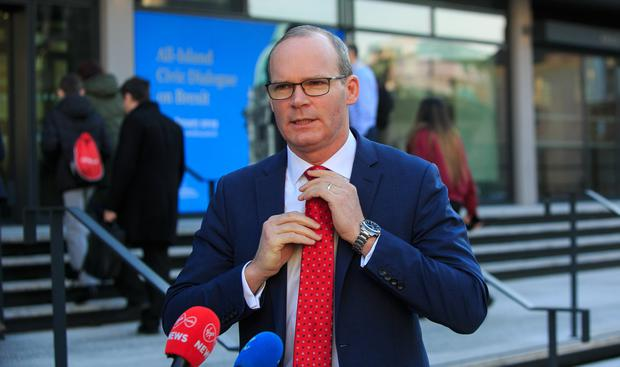 Tánaiste Simon Coveney. Photo: Gareth Chaney Collins