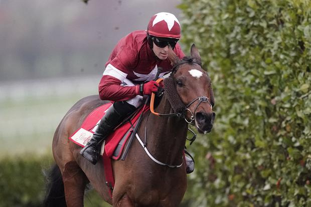 Tiger Roll enjoyed an impressive return to form to win at Navan yesterday at odds of 25/1. Photo by Alan Crowhurst/Getty Images