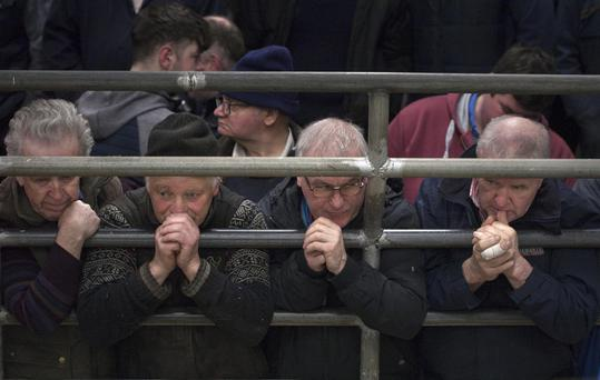 Farmers ringside at Castlerea Mart. Photo Brian Farrell