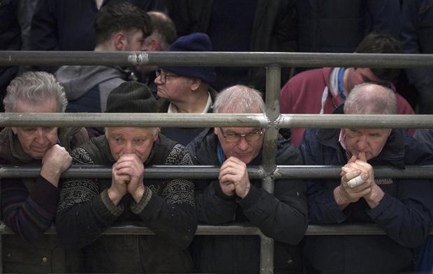 Farmers ringside at Castlerea Mart last weekend. Photo Brian Farrell