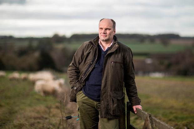 Alan Hutton on his sheep farm near Basingstoke in Hampshire. Britain is the world's third-largest lamb exporter and farmers there fear they will be left with a glut of product if there's no European trade deal. Photo: Jason Alden/Bloomberg