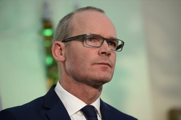 Money matters: Simon Coveney said Ireland is spending hundreds of millions of euro preparing for a no-deal Brexit. Picture: Justin Farrelly