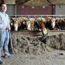 Well stocked. PJ Fitzsimmons on his farm in Inniskeen, Co. Monaghan. Photo: Lorraine Teevan