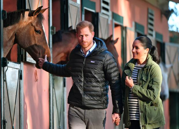 Prince Harry and his wife Meghan, Duke & Duchess of Sussex, pet a horse at the Moroccan Royal Federation of Equestrian Sports in Rabat on February 25, 2019. (Photo by FADEL SENNA / AFP)
