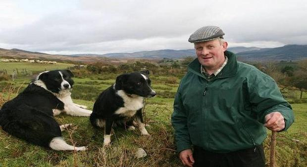Mart manager and local politician Dan McCarthy.