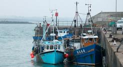Dispute: Two Northern Ireland-registered fishing boats seized by the Irish Navy moored in the port of Clogherhead in Co Louth. Photo: PA