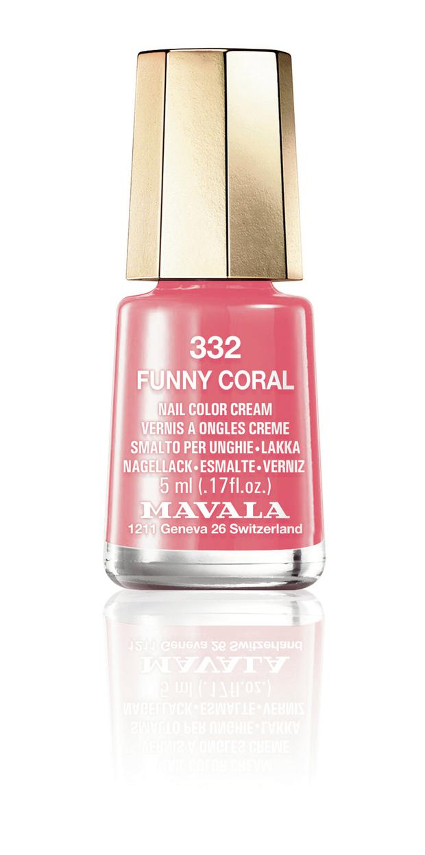 1 our Funny Coral 332.jpg