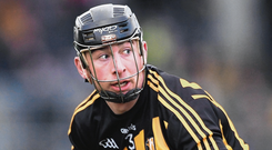 Kilkenny's Conor Delaney in action. Photo: Piaras Ó Mídheach/Sportsfile