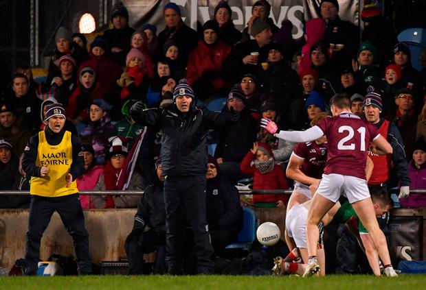 Galway manager Kevin Walsh on the sideline during his sides victory over Mayo in Castlebar. Photo: Piaras Ó Mídheach/Sportsfile