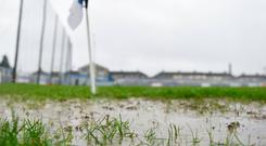 A view of the surface in Walsh Park. Photo: Seb Daly/Sportsfile