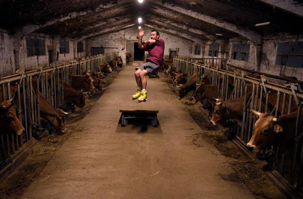 Cattle breeder Pablo Pato practices his skills inside his stable in Llanuces, Spain, February 26, 2019. Picture taken February 26, 2019. REUTERS/Eloy Alonso
