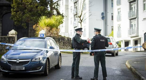 Police at the scene in Newry. Photo: Kevin Scott/Belfast Telegraph