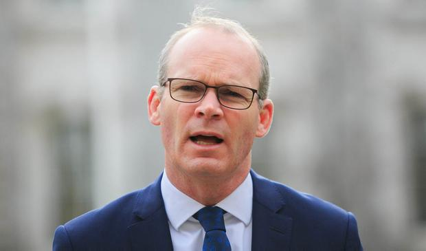 Staying home: Foreign Affairs Minister Simon Coveney. Photo: Gareth Chaney, Collins