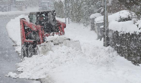 The 'Beast from the East' was a contributing factor to losses. Photo: PA