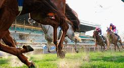 'Watching the same pool of horses race over and over can become tiring but as with everything, it can be made a lot more enjoyable if you can make a few quid out of it.' Stock photo
