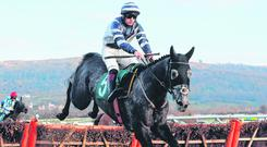 Horse for course: Favourite for today's opener, Al Dancer and Sam Twiston-Davies were easy winners at the track back in December. Photo: David Davies/PA Wire
