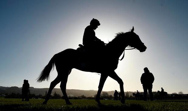 Apple's Jade with Keith Donoghue are watched on the gallops by Gordon Elliott, right, ahead of the Cheltenham Racing Festival at Prestbury Park in Cheltenham, England. Photo by David Fitzgerald/Sportsfile