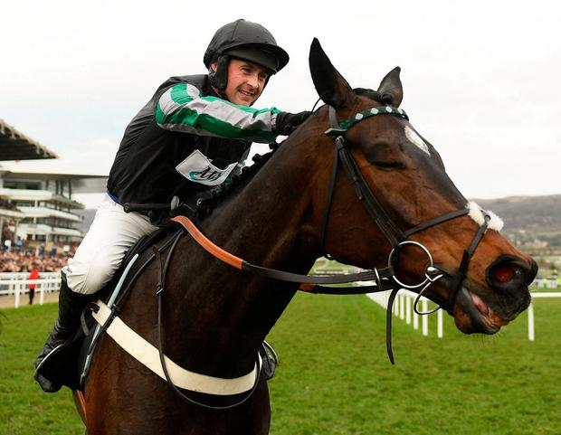 Altior, the embodiment of equine athleticism. Photo: Ramsey Cardy/Sportsfile
