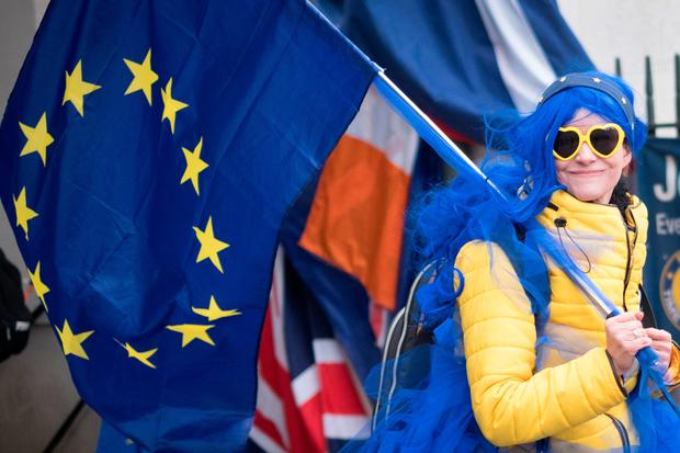 Flying the flag in protest: Brexit demonstrators were out in force in Westminster yesterday. Photo: Stefan Rousseau/PA Wire